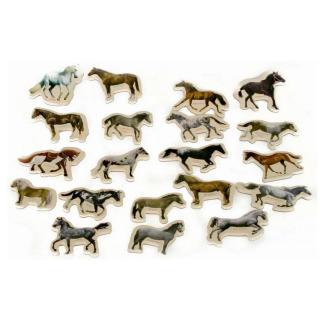 Obrázek 2 produktu Magnety Koně 20 ks