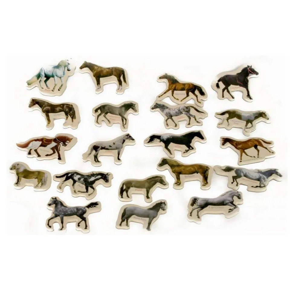 Obrázek 1 produktu Magnety Koně 20 ks