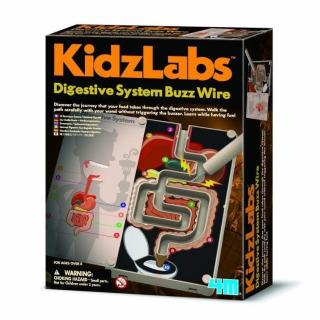 Obrázek 1 produktu KidzLabs Trávící systém