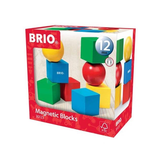 Obrázek produktu BRIO 30123 Magnetické kostky
