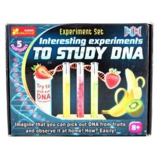 Obrázek 1 produktu Experimentální sada Studie DNA