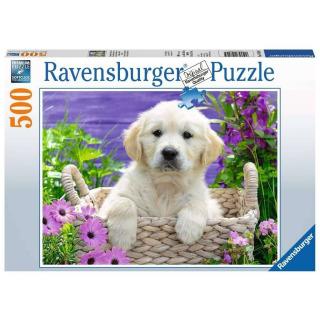 Obrázek 1 produktu Ravensburger 14829 Puzzle Sladký zlatý Retriever 500 dílků