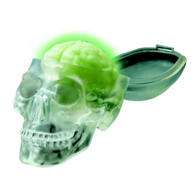 Obrázek produktu KidzLabs Svítící lebka