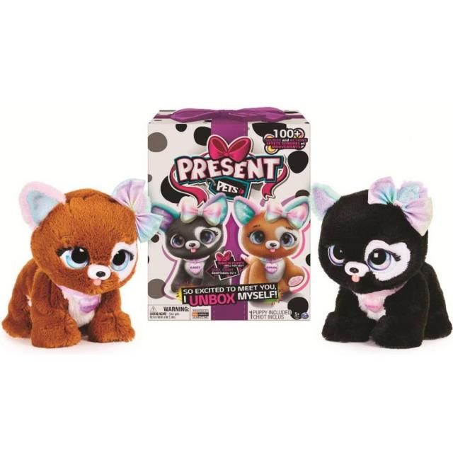 Obrázek produktu Spin Master Present pets Interaktivní módní koťátka Casey a Cocoa
