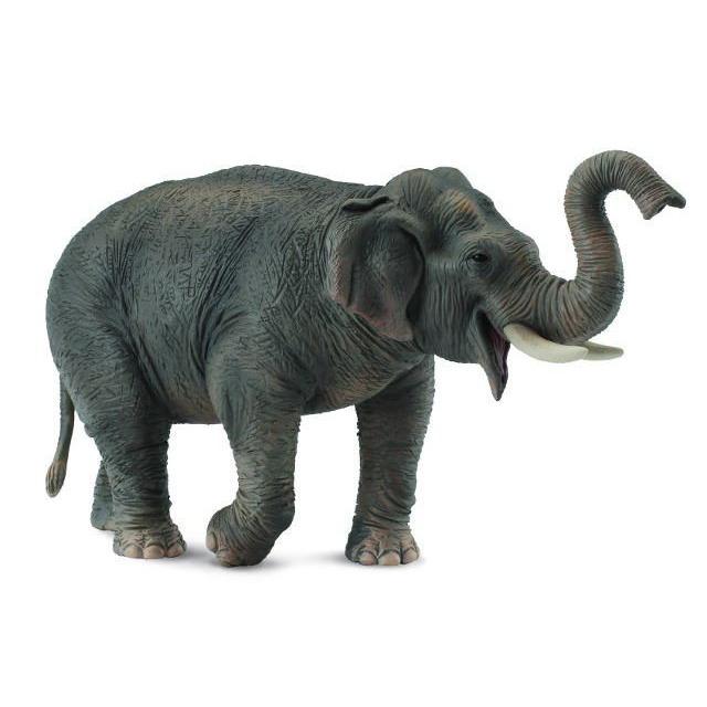 Obrázek produktu Collecta Slon asijský